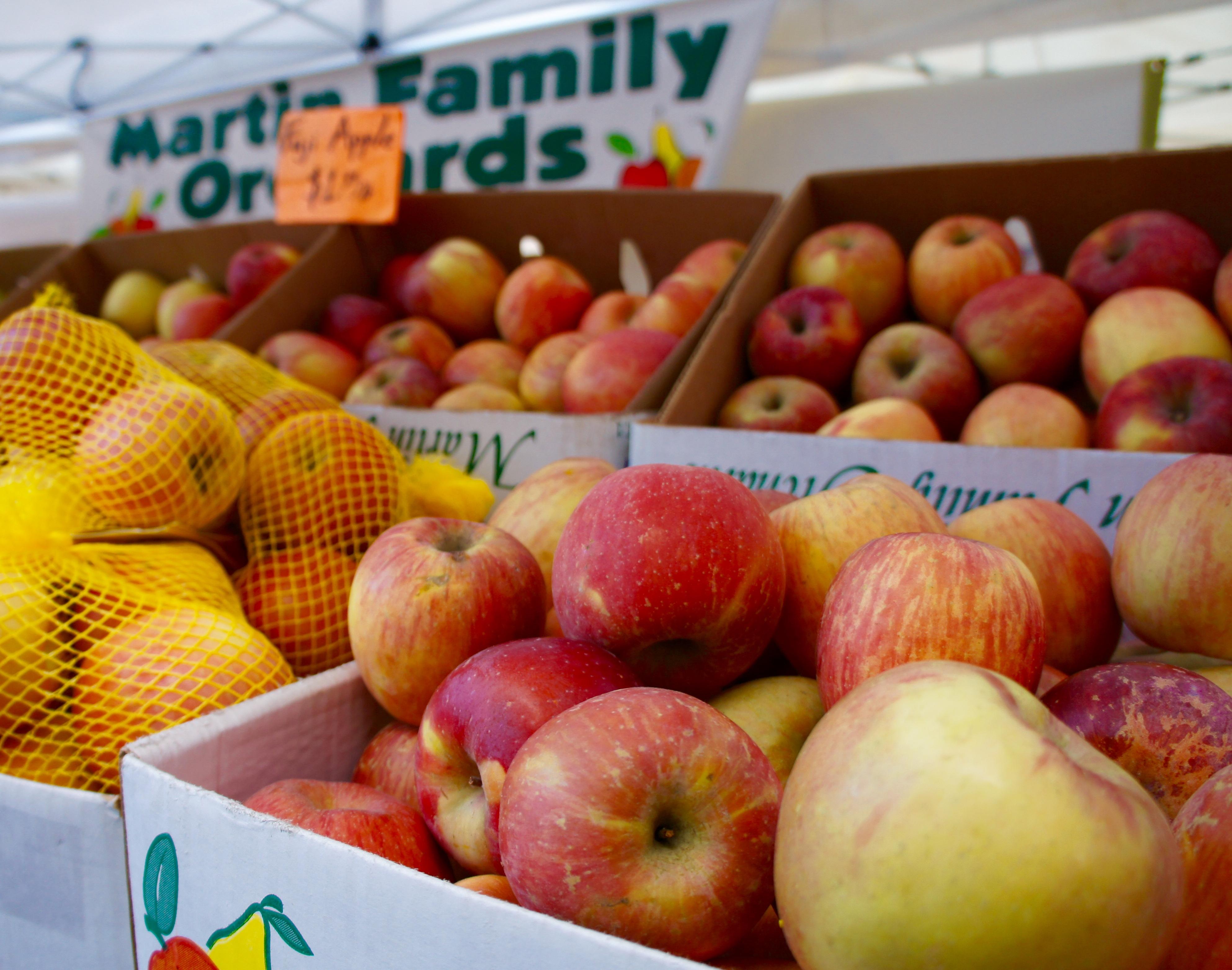 ballard seattle farmers market