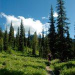 Crystal Lakes Trail 2016