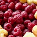 macro shot of red and golden raspberries | kaleandcompass.com
