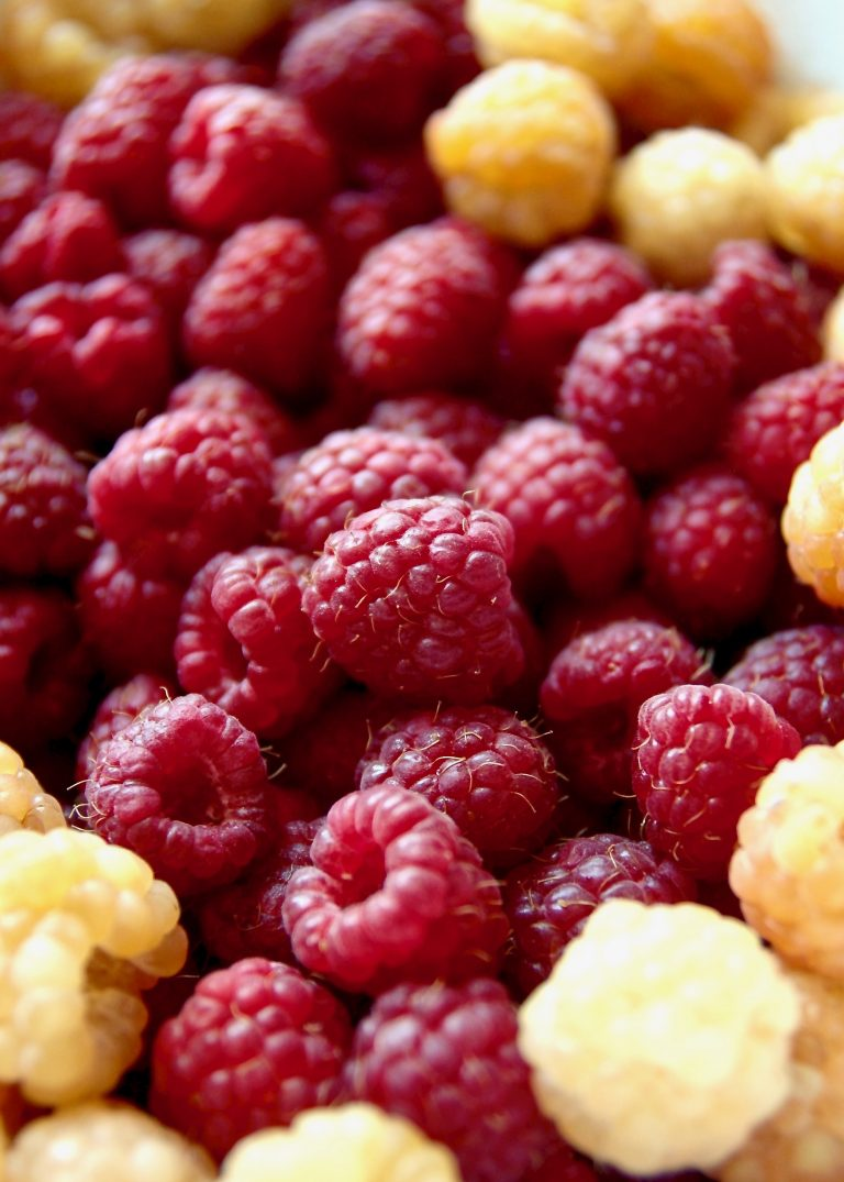 macro shot of red and golden raspberries | kaleandcompass.com